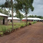 The School.