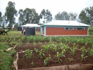Aktuelles Bild vom Gelände der St. Juliane Ugari Mixed Secondary School