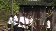 Die Schüler bei der Ernte ihrer Beete