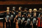 Auch die Nachwuchschöre 3-5 der Wiltener Sängerknaben trugen zum Benefizkonzert bei. (Foto: Reinhold Sigl, BIG Detail)